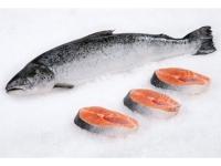 新鮮三文魚