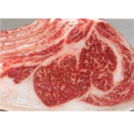 日本神戶牛肉